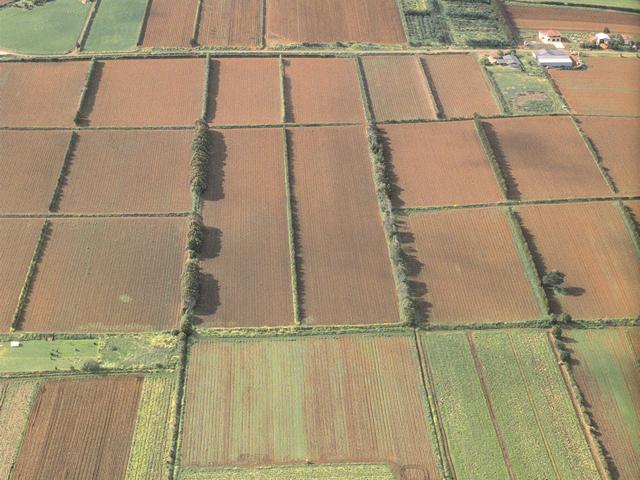 soils-data